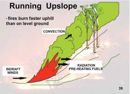 Fig. B3.2 A Fire that is burning upslope is able to transfer its energy to the un-burnt fuel and is classed as being in alignment with the slope