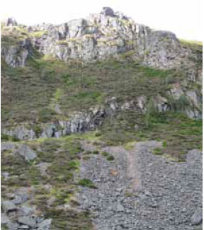Photo B3.16 An outcrop of rock that has broken fuel continuity and could prevent fire spread