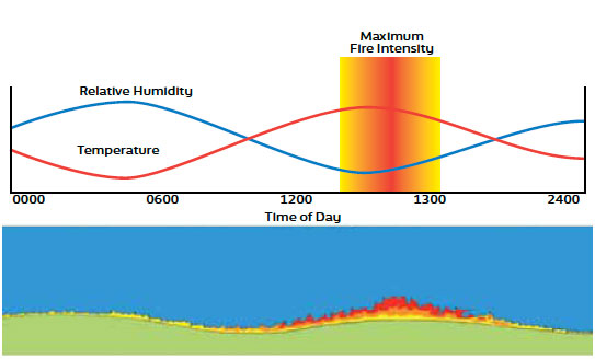 Fig. B5.1 Diagram showing the changes brought about by variations in temperature and relative humidity throughout the day. As temperature rises relative humidity falls resulting in increased fire intensities