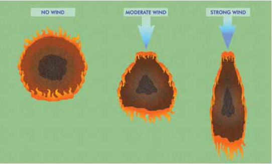 Fig. B5.4 The effect of wind on the shape of the fire