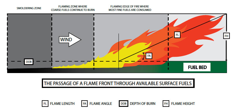 Fig. B5.15 Showing a representation of a head fire spreading through fuels on level terrain