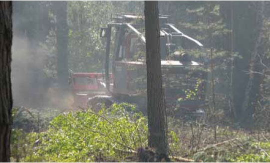 Photo B8.8 Forestry Commission equipment clearing woodland