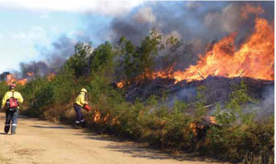 Photo B8.13 An offensive burn being carried out to strengthen a dirt track which has been utilised as a control line