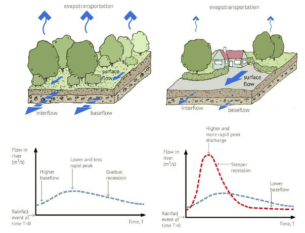 Figure 4. Overview of surface water flows in a natural catchment and in a developed catchment, illustrating the impact of urbanisation showing increased surface water flows and increased river flows.