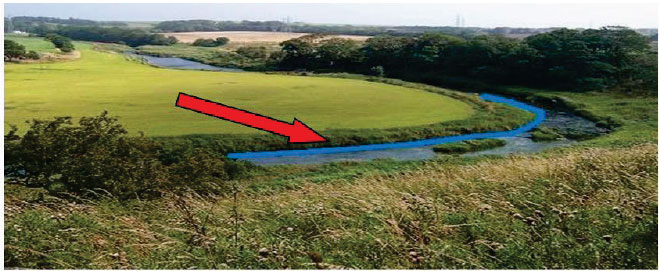 In this case, the Land Parcel Identifier boundary (blue line) is on the water's edge