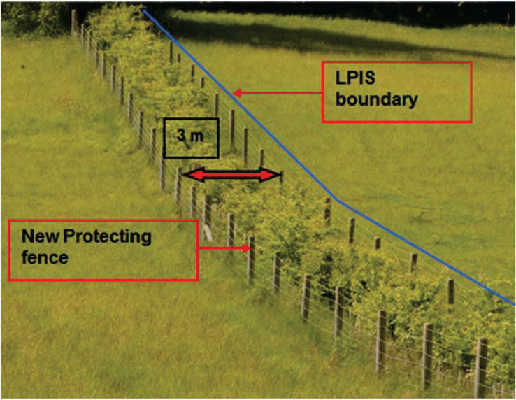 In this case, the Land Parcel Identifier boundary is on the original fence (right-hand side)