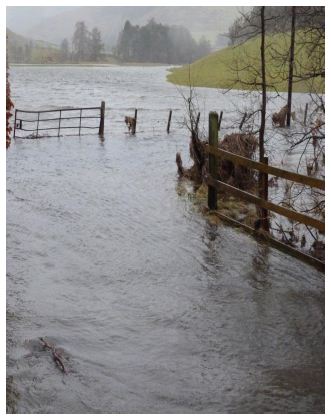 Flooding in the Borders January 2014