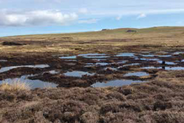 Sandy Loch, Shetland. The eroding peat has been transformed into bog pools and re-planted with bog vegetation.