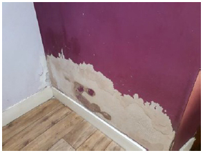 Photo 5: Damp on the hall wall