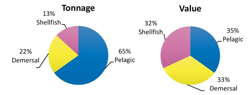 Chart 2. Percentage of Scottish vessels' landings by species type